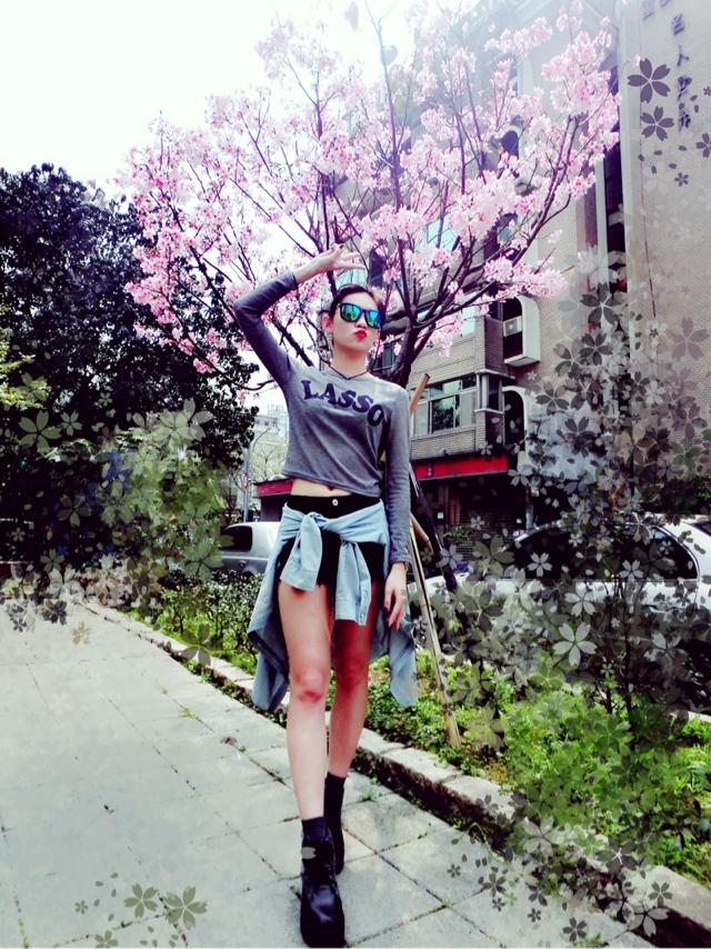 櫻花🌸陽光